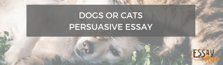 Dogs or cats persuasive essay