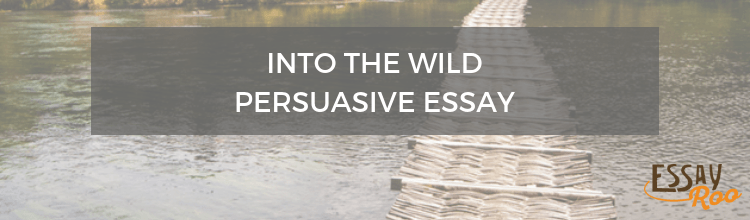 """Persuasive Essay About """"Into the Wild"""""""