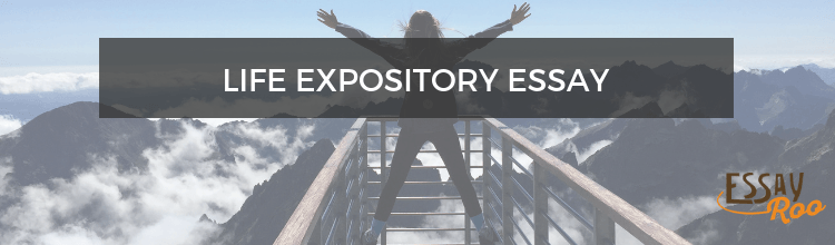 How to Write a Great Expository Essay About Life